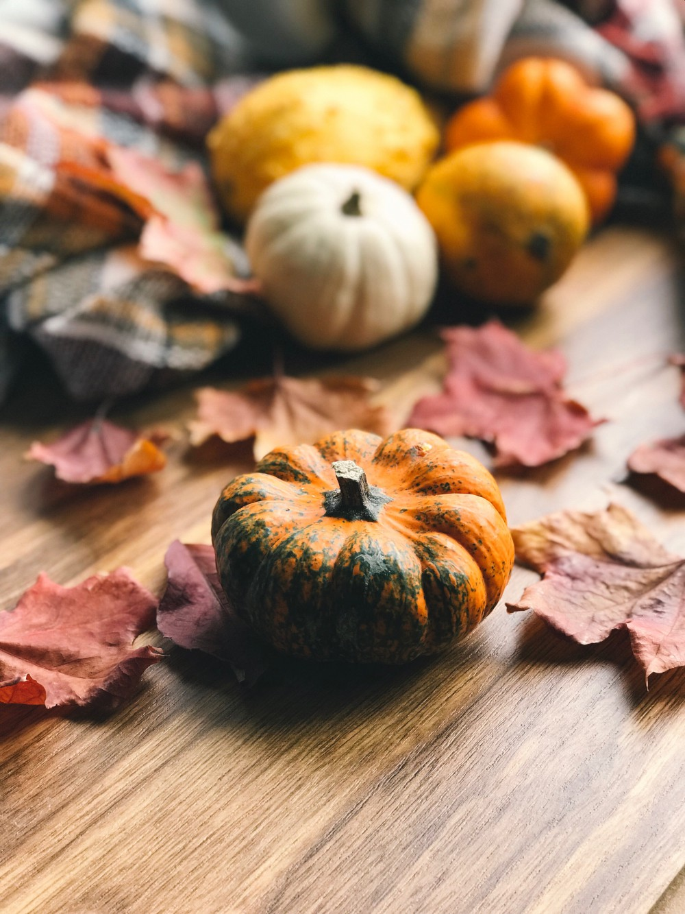 Autumn produce - Pumpkins